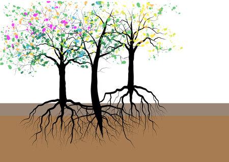 arbol raices: árboles con raíces bajo tierra, ilustración vectorial Vectores