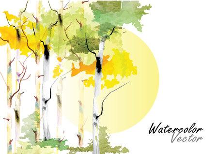 白樺ツリー白樺樹木ベクター水彩筆の手描き  イラスト・ベクター素材