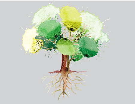 large tree: Green tree with roots watercolor design  vector illustration