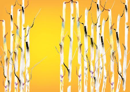 birch forest: Birch tree ,forest birch trees  vector watercolor brush hand drawn ,vector illustration Illustration
