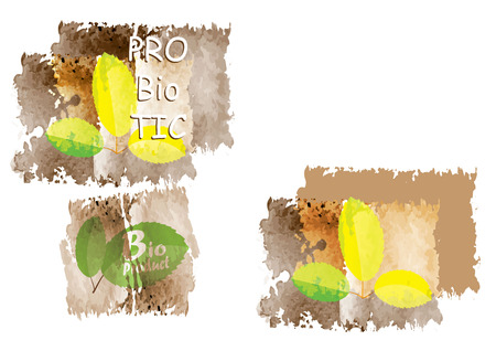 brow: Organic Idea with  leaves with brow floor for concept or background