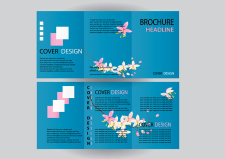 a5: Brochure Design Template. Flower concept, Abstract Modern Backgrounds, Infographic Concept. size A5, Front page and back page Illustration