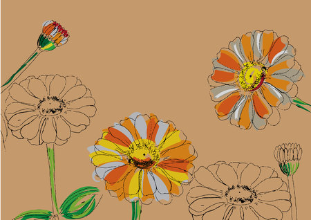 abstract flower with line art zinnia flowers for background