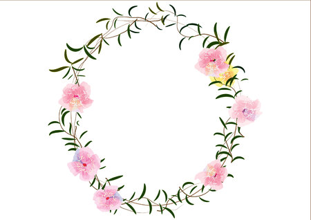 Border Or Frames Flowers Created ,cherry Blossoms Flowers Border ...