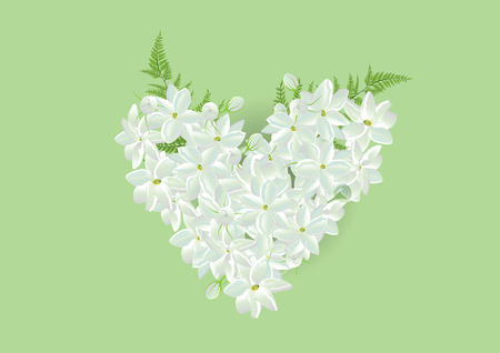 Jasmine heart shape with fern leaf on green background.isolated pictures  for card or object Illusztráció