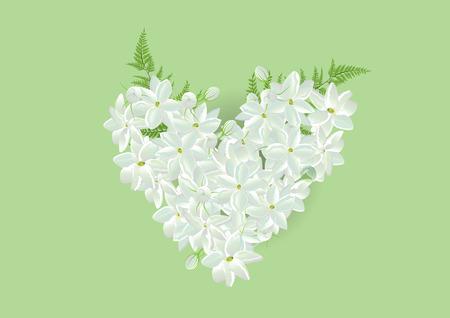 la forma del corazón de jazmín con la hoja de helecho en las imágenes background.Isolated verdes de tarjeta o de objetos