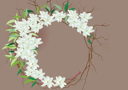 cyclamen: Crown jasmine flowers with leaves  top view  and side view .vector illustration