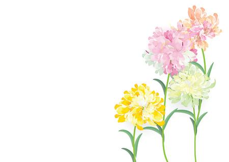 cuatro flores de color verde amarillo rojo rosa círculo ramo sobre fondo blanco, ilustración vectorial, tarjeta de felicitación para la plantilla de objeto o fondo Ilustración de vector