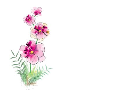 pink abstract watercolor flower for object or background
