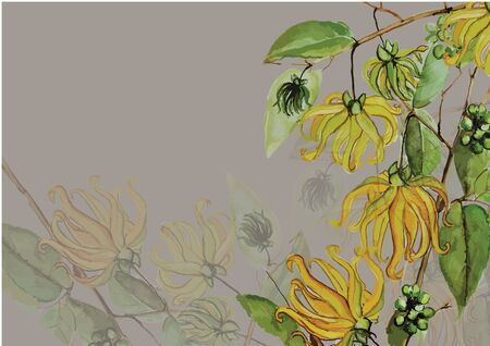 yellow flower hand drawn with green leaves and branch watercolor painting