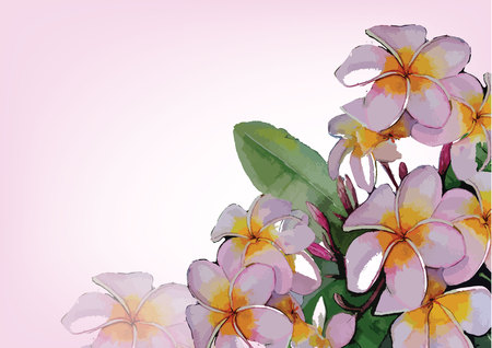 pink flowers hand drawn watercolor painting for background