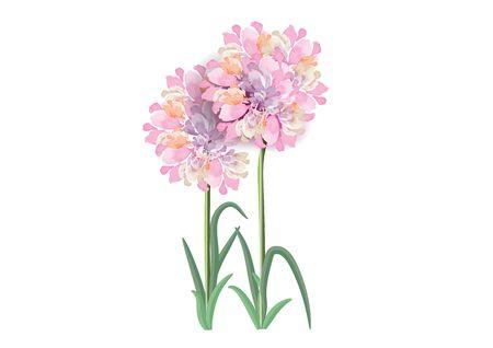 pink flowers circle bouquet    ,vector illustration Illusztráció