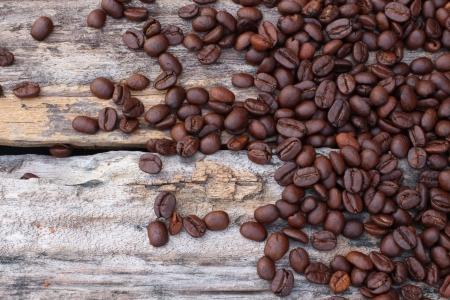 coffeetree: coffee beans on the wood Stock Photo