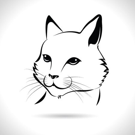 Vector of a cat face design on the white background, Pet Animals.