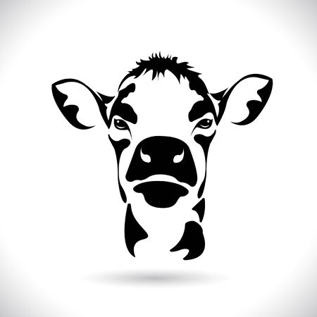 Vector of picture cow head design ,logo design,Farm Animals,Black and white picture,Line animal,on the white background.