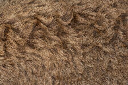 Fleece brown,Close up of fleece, exture background. Banco de Imagens
