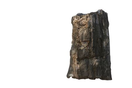 Big stone brown (bogwood) Isolated on the white background.