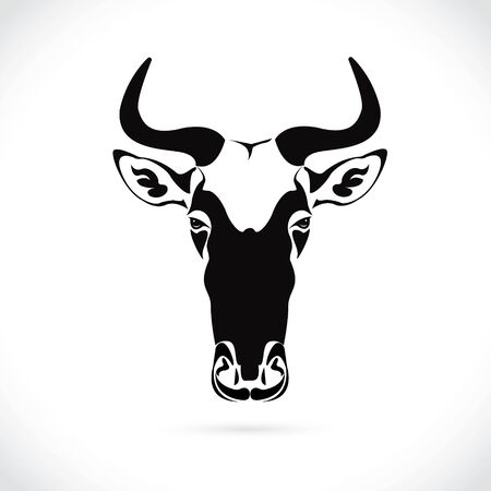 Vector image of an wildebeest head design on the white background. Illustration
