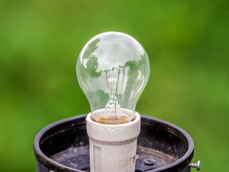Closeup light bulb with green nature abstract blur background.