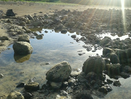 low tide: Early morning, low tide, Rodrigues, Mauritius.
