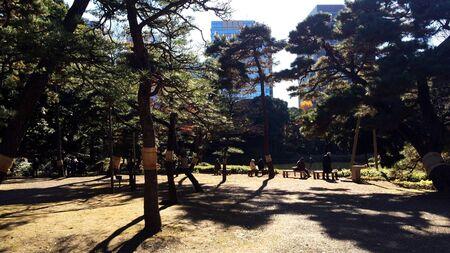poems: Park in Tokyo : Rikugien Stock Photo