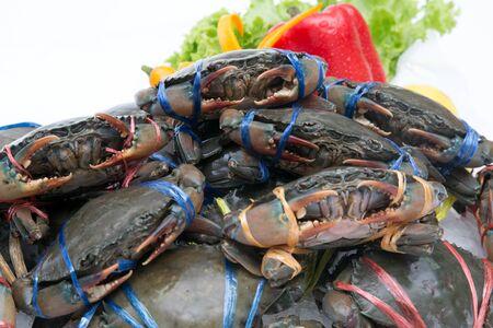 Crabe frais sur fond blanc Banque d'images