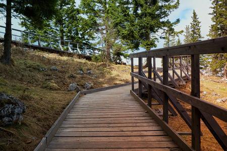 Board bridge for hiking in mountains