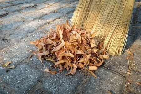 Broom sweeping dry leaves in a heap in the garden Stock fotó