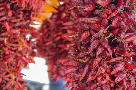 Closeup of red hot chili peppers drying in rows in sun Stock fotó