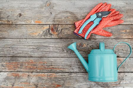 Copy space with garden tools, gloves and watering can