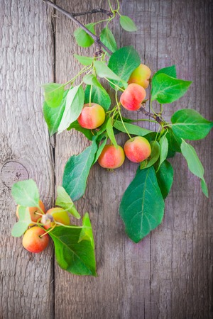 Branch with apples on a wooden board