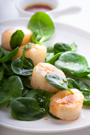 Scallop Salad with greenery on a white plate.