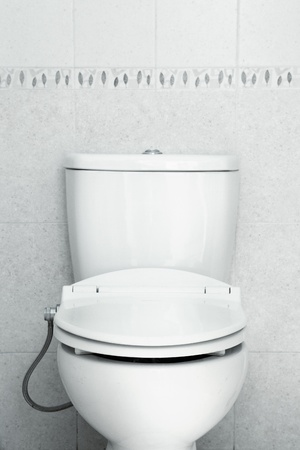 seat toilet with hygiene look Stock Photo - 10630304