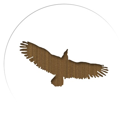 Silhouette of an eagle carved in cardboard  photo