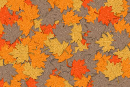 profusion: Illustration of Autumn leaves in different colors