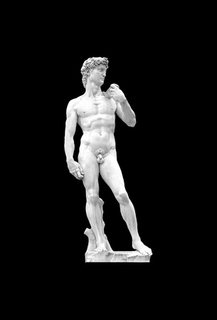 naked statue: David by Michelangelo