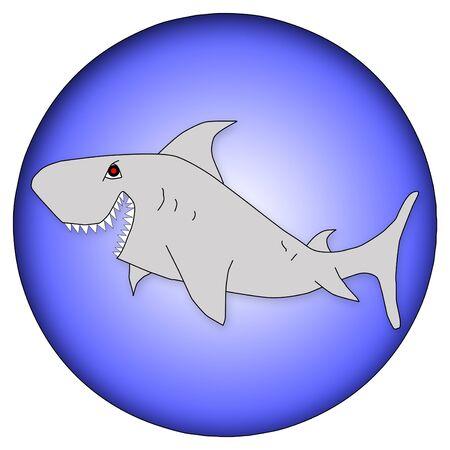 Cartoon shark illustration over round blue and white shape illustration