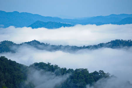 Morning mist at Kaeng Krachan National Park, Thailand Stock Photo - 7972376