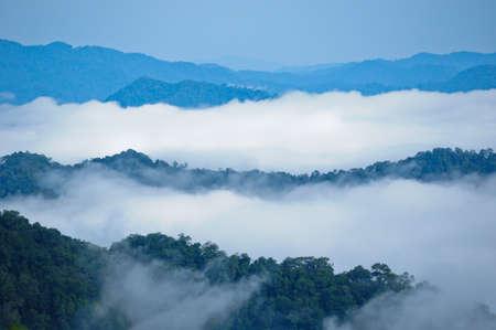 Nebbia di mattina a Kaeng Krachan parco nazionale, Thailandia