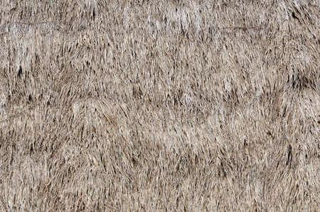 Texture in paglia