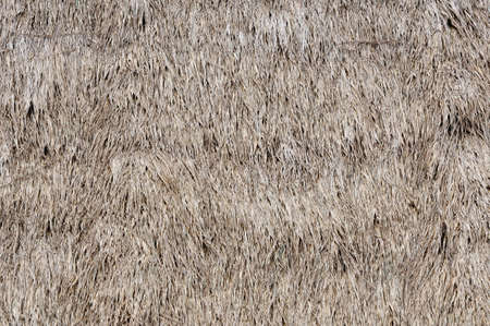Thatched Texture