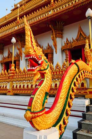 Thai dragon or king of Naga Stock Photo - 8340556