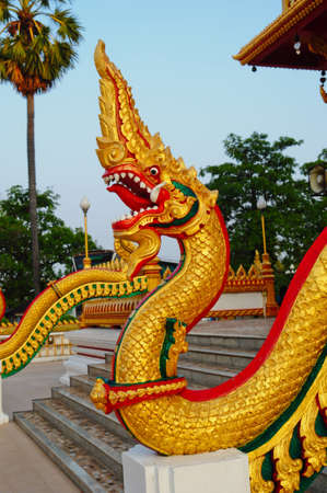 Thai dragon or king of Naga Stock Photo - 8340539