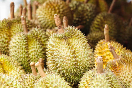Durians at market photo
