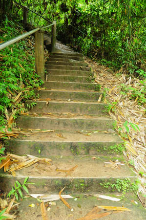 stone stair on nature park photo