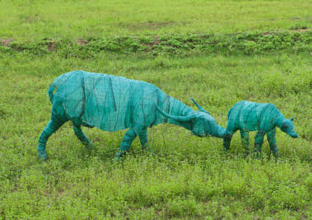 Model of Two buffaloes in green field Stock Photo - 11076707