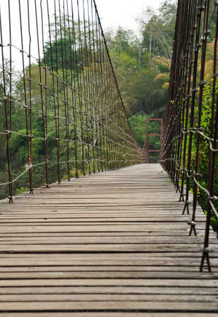 Rope bridge in natural park photo