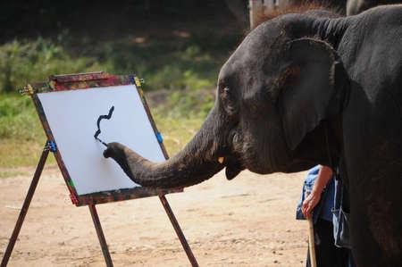 elephant and painting Stock Photo