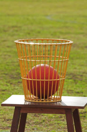 Ball in the basket
