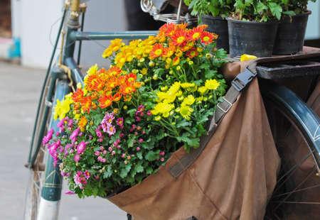 flower in the bag